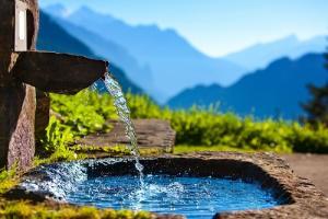 можно ли пить сырую родниковую воду