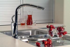 смеситель zorg с краном питьевой воды