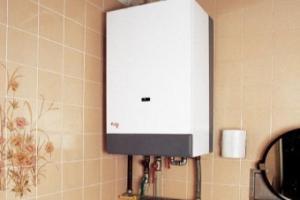 газовые накопительные водонагреватели без дымохода