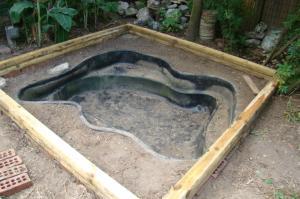 пруд бассейн на даче своими руками